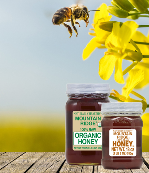 Mountain Ridge Honey jars display with honey bee pollinating yellow flower.